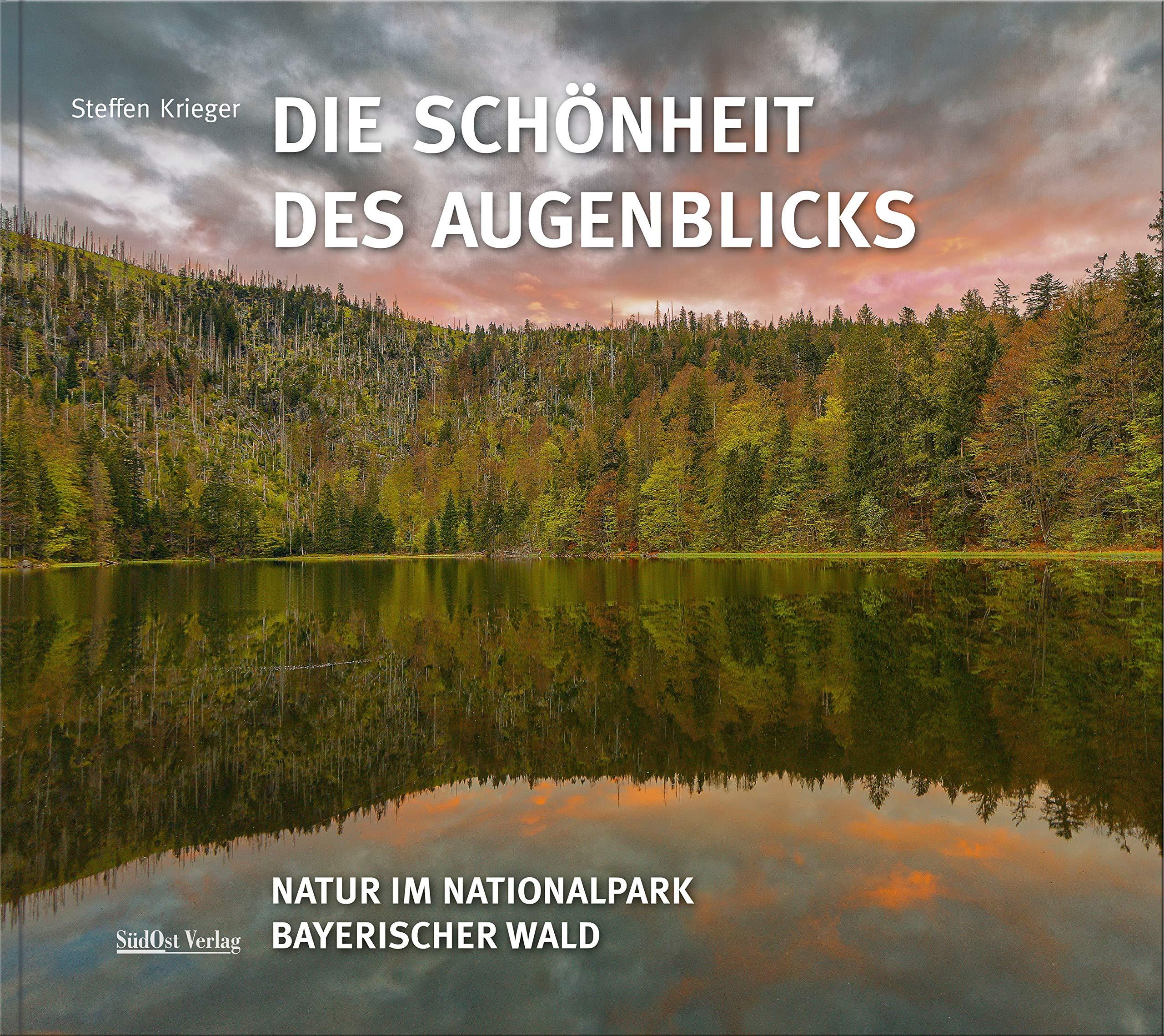 """Empfehlung: Steffen Krieger """"Die Schönheit des Augenblicks"""""""