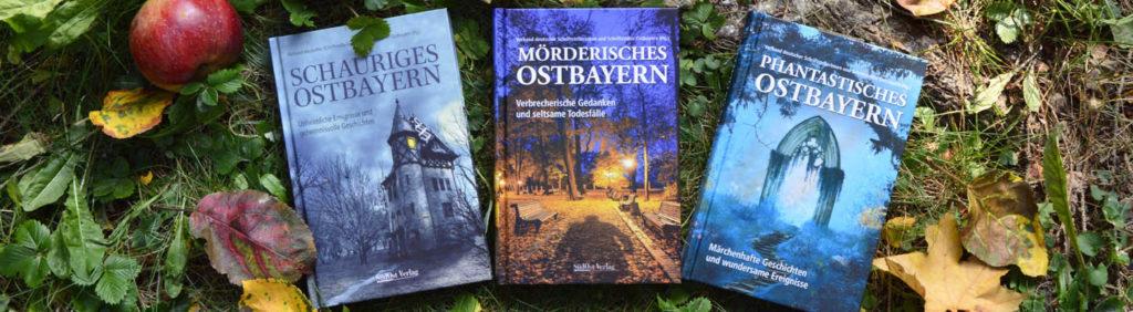 bisherige Bücher