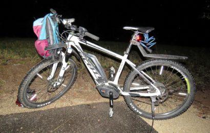 Radfahrer wird von querendem Reh zu Fall gebracht