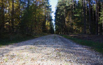 Waldarbeiten enden im Klinikum