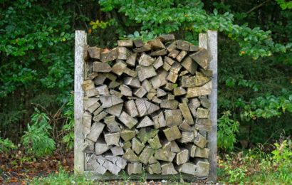 Holz gestohlen