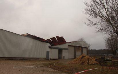 """Sturmtief """"Sabine"""" deckt Dach eines Pferdestalles ab"""
