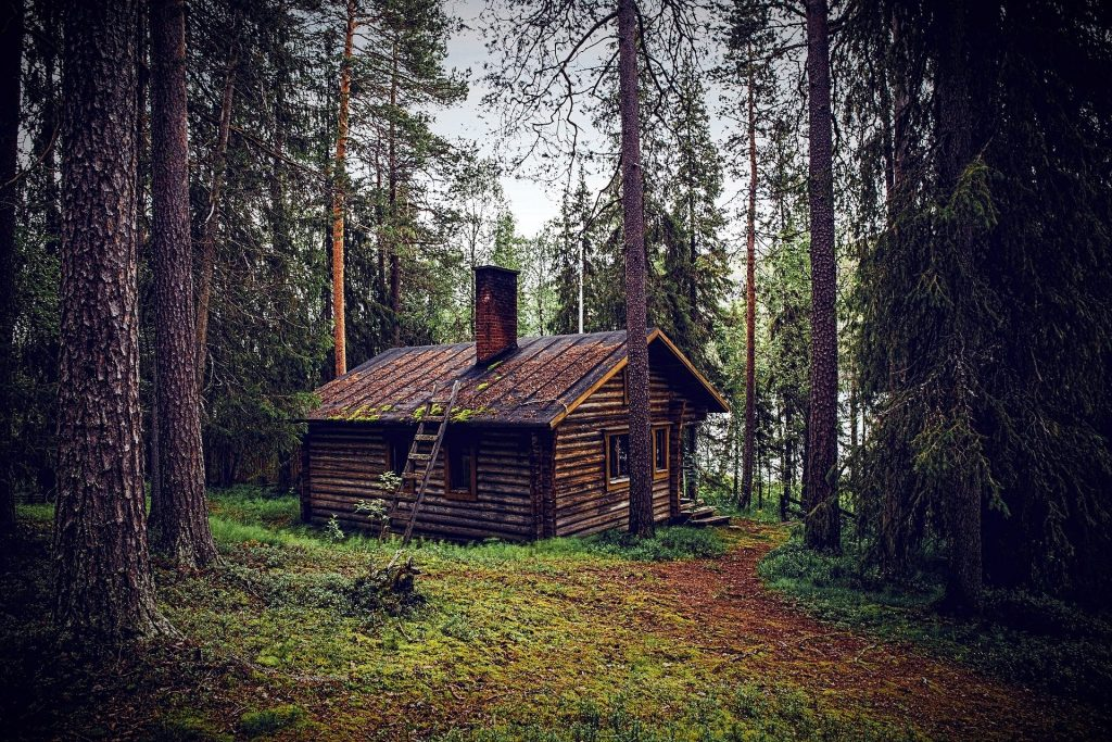 Symbolbild: Waldhütte