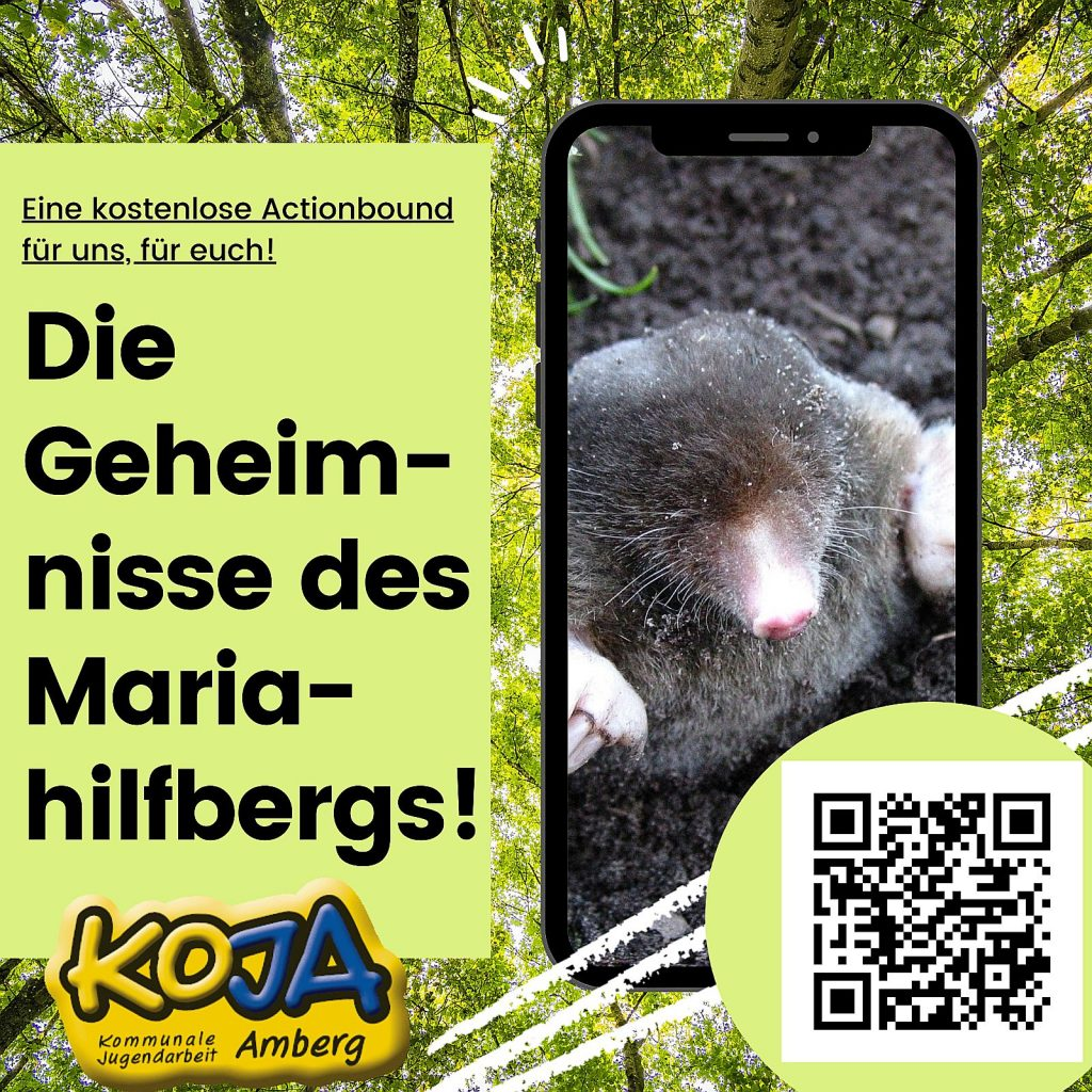 Digitale Schnitzeljagd der KoJa Amberg